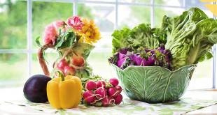 alimentation naturelle table assiette